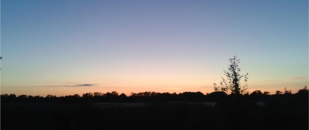 Õhtune taevas